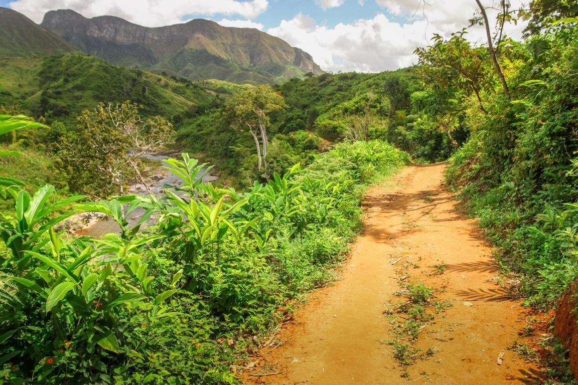 Regenwaldwanderung in den Primärwäldern von Madagaskar
