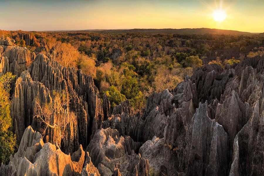 Reisen in die Natur von Madagskar
